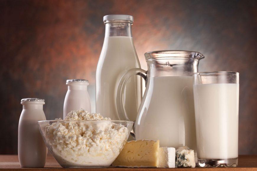 A táplálóanyagok szerepe a korszerű borjúitatási technológiák alkalmazásakor: FEHÉRJÉK